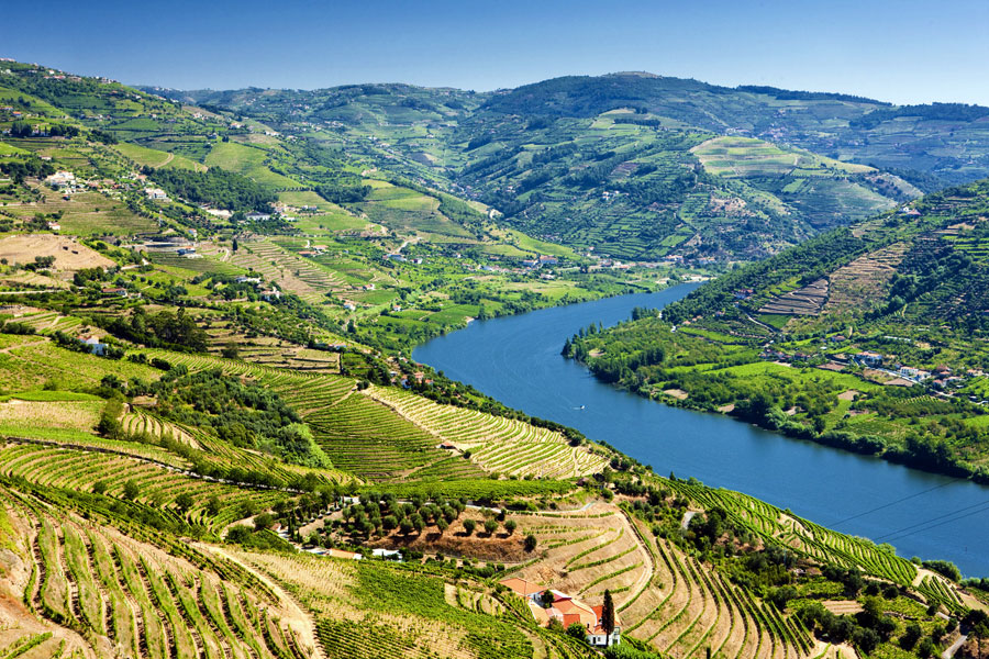 Douro Region of Portugal, famous for its wines incl. Port wine