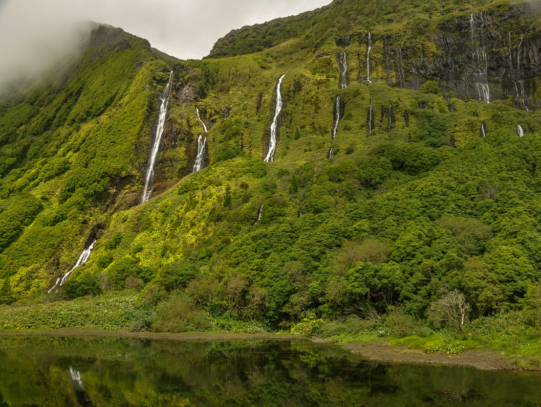 The Jurrassic park like Flores Island, part of the Azores, Portugal, Photo by Sola Gasta