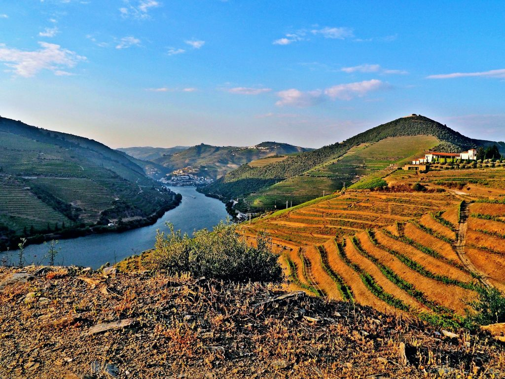 A beautiful view of Douro River