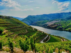 Douro - Hortense Travel