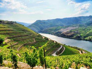 Douro 8 - Hortense Travel