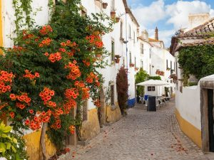 Obidos Tour 6 - Hortense Travel