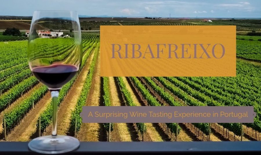 Ribafreixo – A Surprising Wine Tasting Experience in Portugal