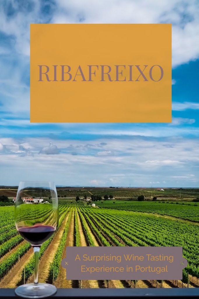 Ribafreixo2