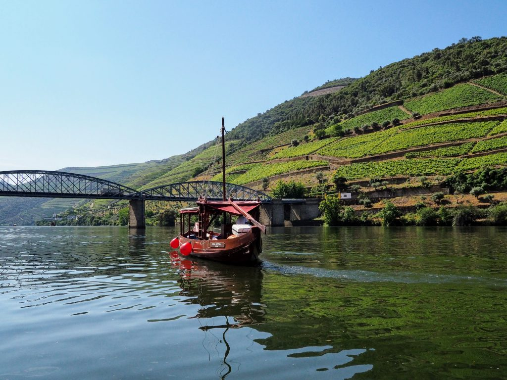 Douro Valley by Boat