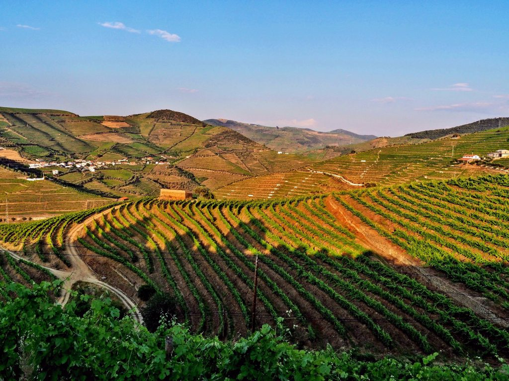 Douro-Valley4