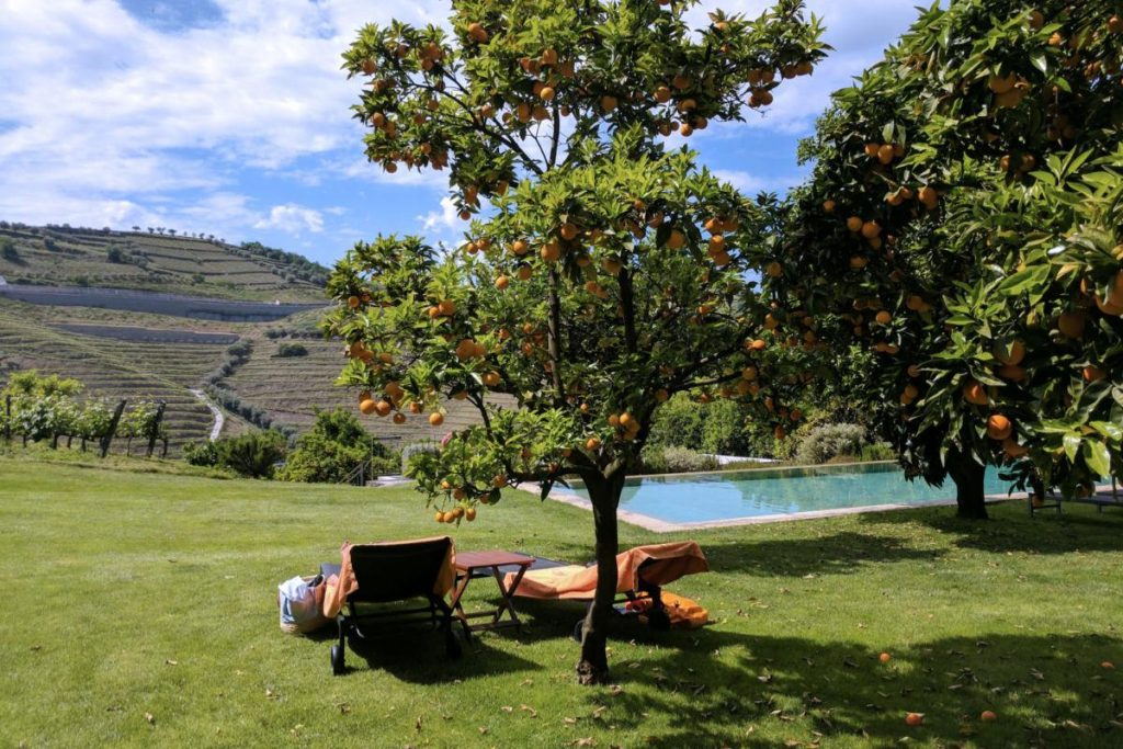Quinta-do-Vallado-Douro-Valley
