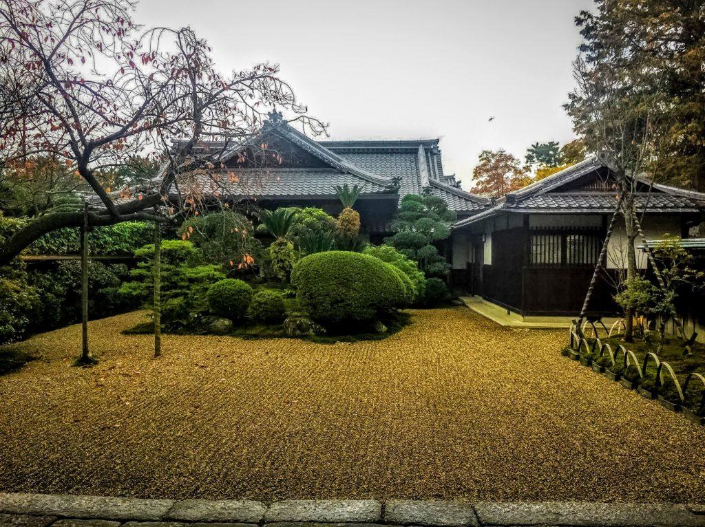 Nara-Park-Japan16