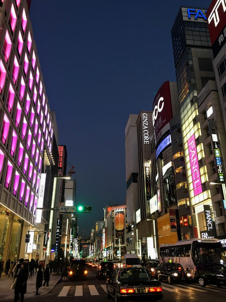 Busy Street in Ginza
