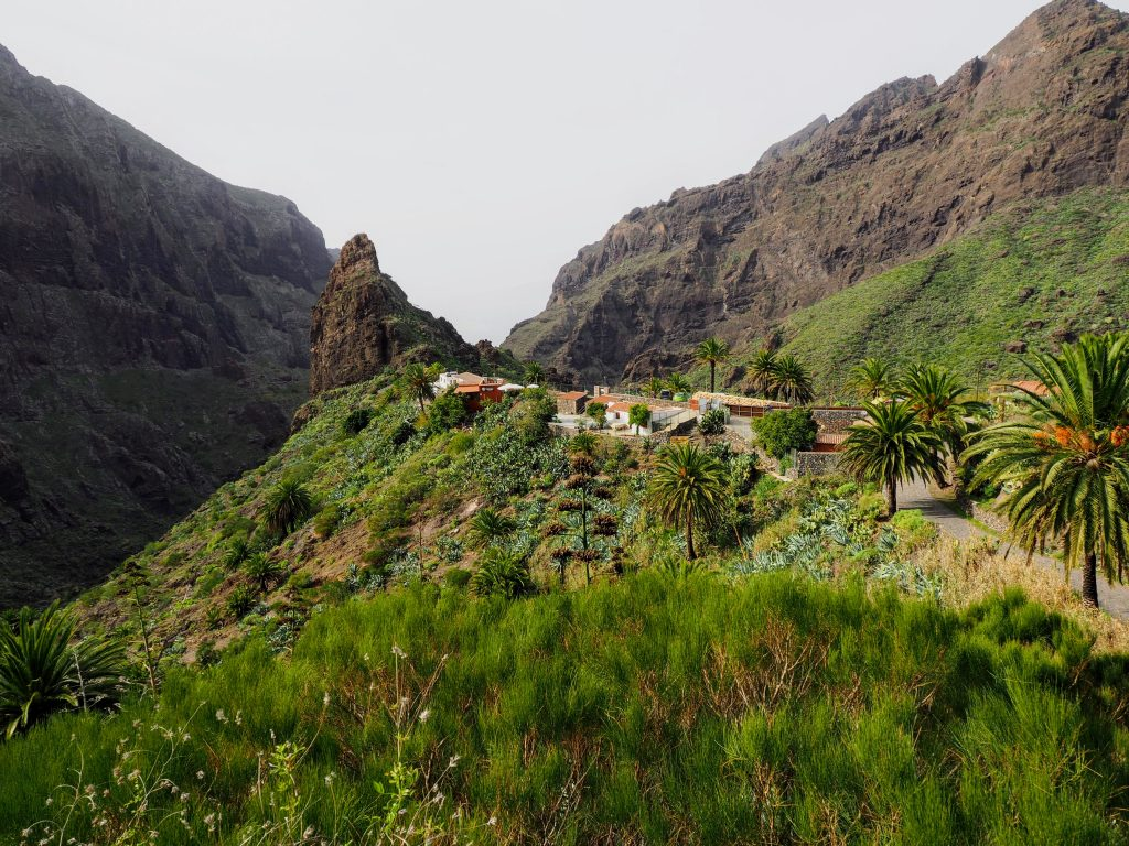 Tenerife  in December