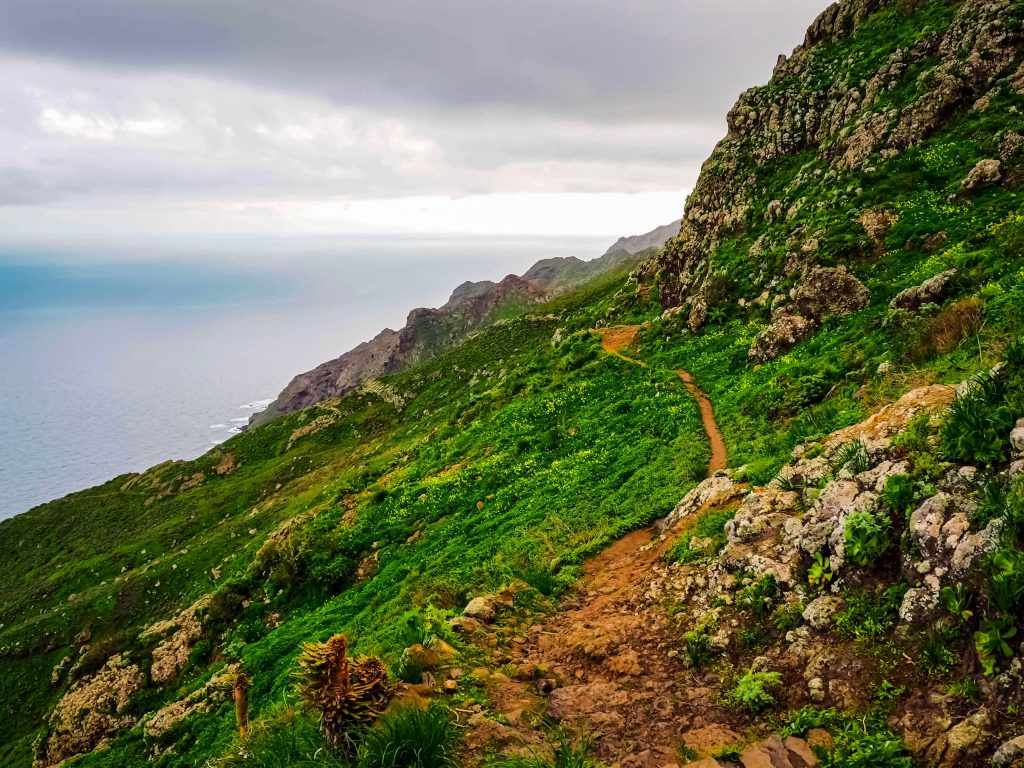 Tenerife-away-from-the-crowds11
