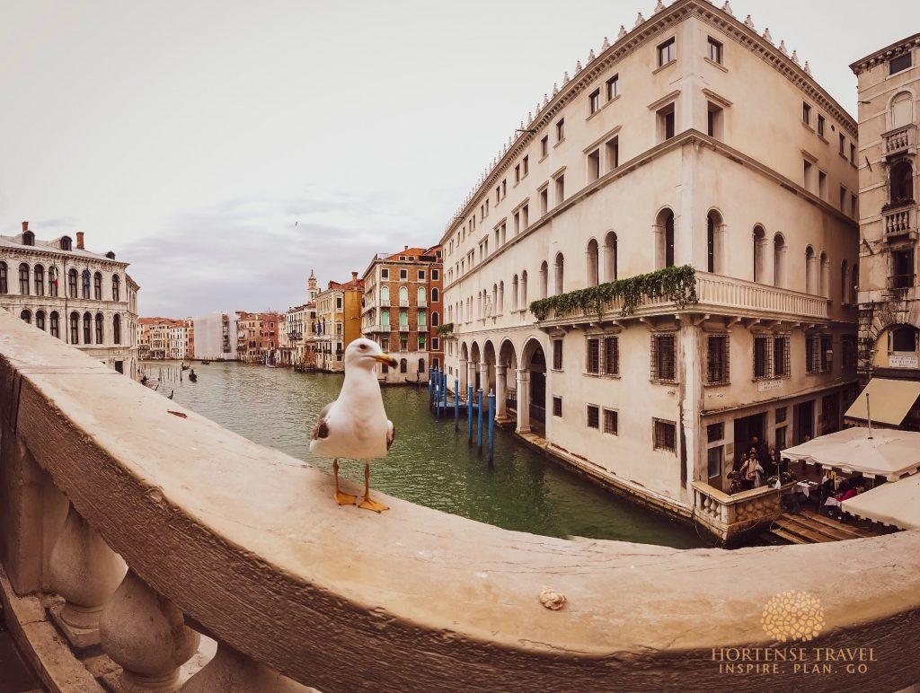 Buildings in Venice