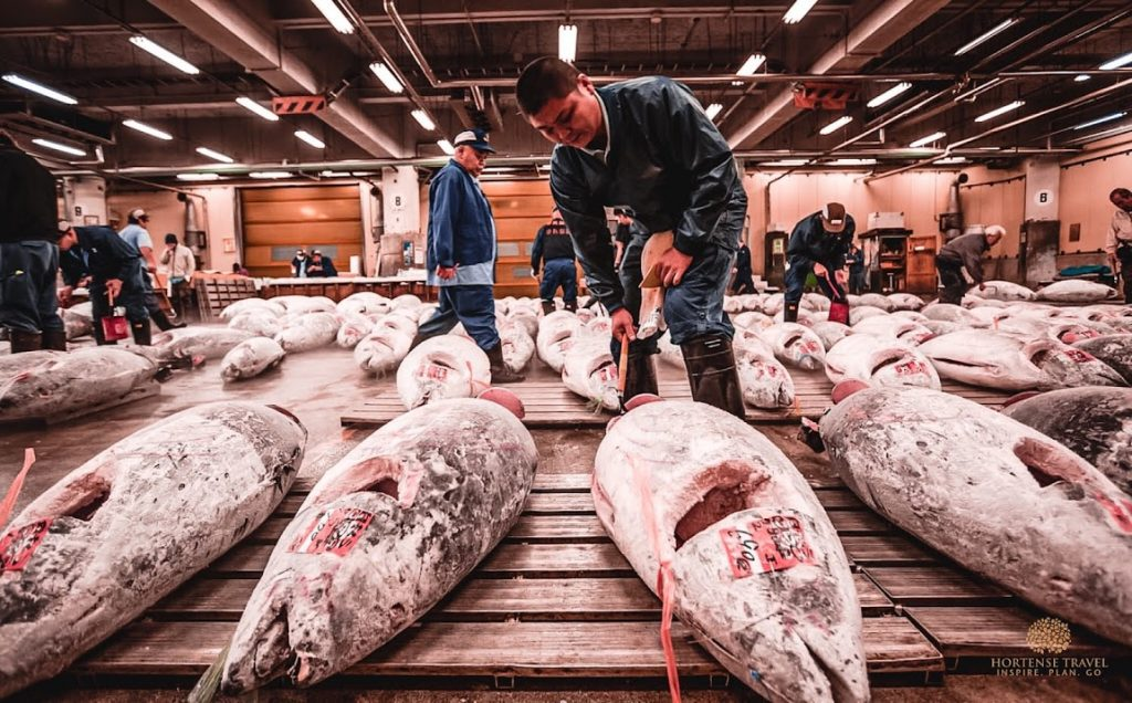 How To Explore The Outer Tsukiji Fish Market - Hortense Travel